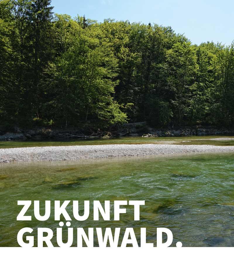 die Zukunft Grünwalds